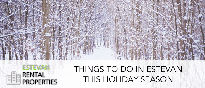 Things to do in estevan this holiday season